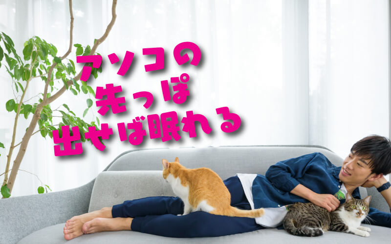 アソコの先を出すとよく眠れる説